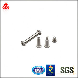 Galvanize M8-M20 Female and Male Screws Carbon Steel pictures & photos