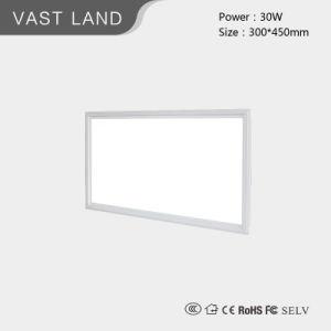 30W/48W/55W/36W Flicker Free 60*60/60*120 LED Panel Light with Warranty