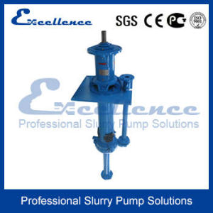 Centrifugal Vertical Slurry Pump (EVM-40P) pictures & photos