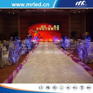 P4 SMD Indoor Full Color LED Display pictures & photos