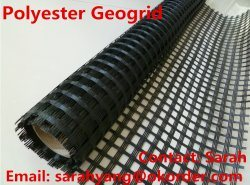 Polyester Geogrid/Fiberglass Geogrid/ Plastic Geogrid pictures & photos