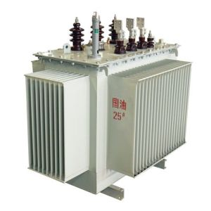 Self Cooled Power Transformer pictures & photos