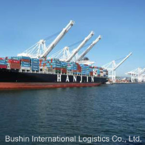 Sea Freight Shipping From China to Japan (HAKATA/KOBE/MOJI/NAGOYA/OSAKA/TOKYO/YOKOHAMA) pictures & photos