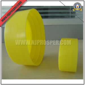 Made in China LDPE Plastic Pipe End Caps (YZF-C22) pictures & photos