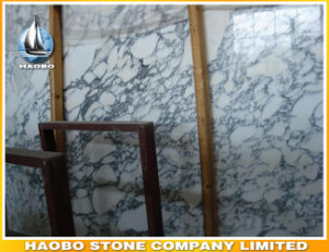 Wholesale Arabescato Wormal Marble Tile Own Quarry pictures & photos