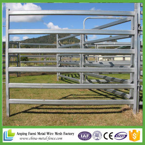 Heavy Duty Hot DIP Galvanized 40mmx80mm Oval Pipe Pasture Fencing pictures & photos