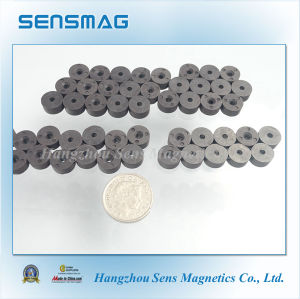 Bonded Ferrite Magnets with Radial 6 Poles Magnetized pictures & photos