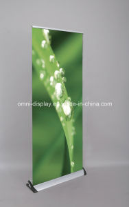 Shark Display Stand Roll up Banner pictures & photos