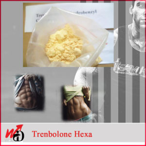 Tritren Steroid Powder Tren Acetate Tren Enanthate Tren Hexahydrobenzylcarbonate pictures & photos