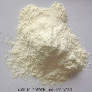 Garlic Powder, Dehydrated Garlic with Good Quality pictures & photos