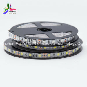 Good Quality LED Lighting LED Strip 12V 60/90/120LED pictures & photos