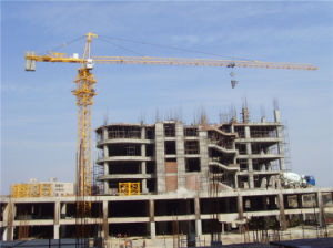 Tower Crane Made in China by Hsjj Qtz5010 pictures & photos