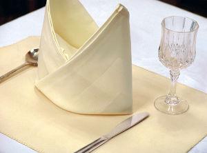 Napkin / Hotel Textile / Table Mat (DPR3022) pictures & photos