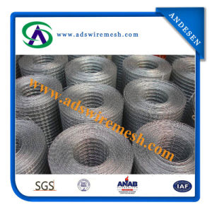 Strong Quality Welded Wire Mesh (Galvanized/PVC Coated) pictures & photos