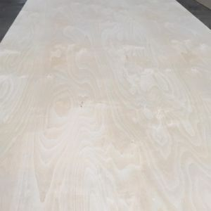 18 mm White Birch Face Birch/Poplar/Hardwood Core Plywood pictures & photos