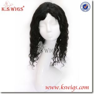 Indian Human Hair Full Lace Wig Human Hair Wig pictures & photos