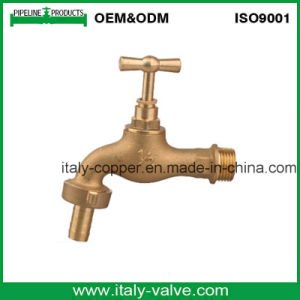 Brass Forged Bibcock with T Brass Handle (AV2021) pictures & photos