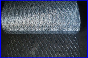 New Straight and Reverse Twisted Hexagonal Wire Netting pictures & photos