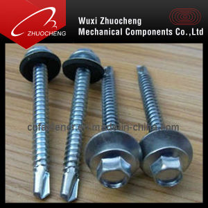 Hex Self Drilling Screws With Rubber Washer (DIN7504) pictures & photos