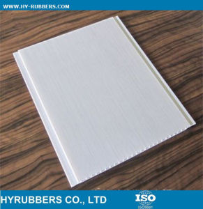 20cm 25cm Normal Print PVC Ceiling Wall Panel pictures & photos