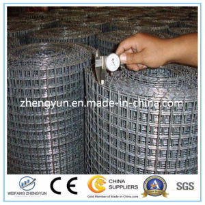 High Quality Galvanized Mesh Heavy Zinc Coated Welded Wire Mesh pictures & photos