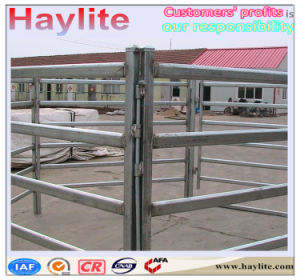 Best-Selling Field Fence Panel for Cattle Cow Horse pictures & photos
