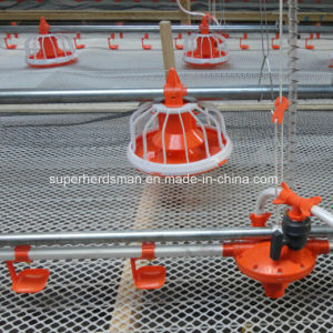 Poultry Farming Equipment for Broiler Chicken House pictures & photos