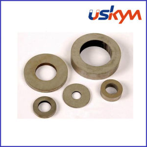 SmCo Rare Earth Magnets (R-006) pictures & photos
