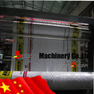 HDPE/PP Woven Sacks Raffia Flexographic Printing Machine pictures & photos