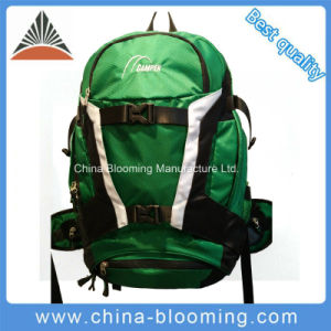 Green Color Sports Travel Outdoor Hiking Mountain Bike Bag Backpack pictures & photos