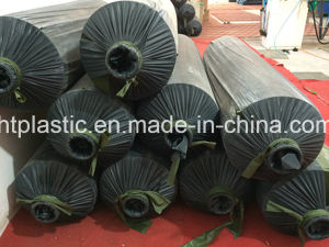 PVC Film with Higher Qualty and Different Sizes pictures & photos