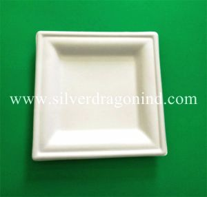 Biodegradable Disposable Compostable Sugarcane Bagasse Paper Plate pictures & photos