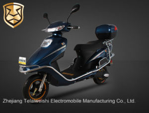 800W Drum Brake Brushless Motor Electric Bike with Electroplated Rack