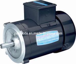 Nema Standard High Torque Asynchronous Electric Motor
