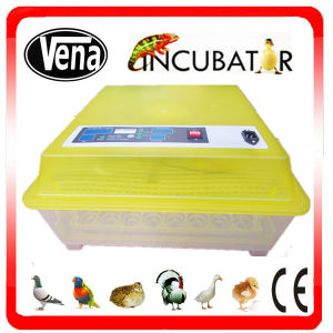 Professional Nanchang Manufactory Mini Incubators for Chicken Eggs pictures & photos