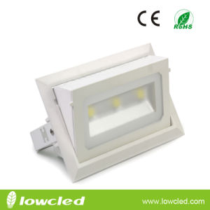 30W Adjustable LED Ceiling Flood Light with Bridgelux+Meanwell Driver 3years Warranty