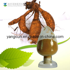 Kudzu Root Extract Puerarin 98% pictures & photos