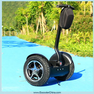 Ecorider Adult City Road Self Balancing Electric Scooter pictures & photos
