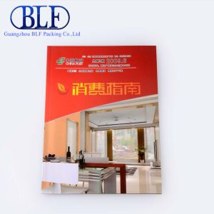Cheap Custom Paper A5 Size Brochure Design (BLF-F020) pictures & photos