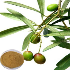 High Quality Olive Leaf Extract/ Hydroxytyrosol 40% pictures & photos