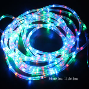 LED Rope Strip Light for Garden Home Street Wedding Holiday Decoration