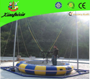 Single Inflatable Bungee Trampoline (LG018) pictures & photos