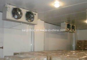 Large Cold Storage with Refrigerator Unit pictures & photos