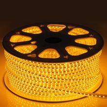 Shenzhen High Voltage 85-265V LED Rope Light pictures & photos