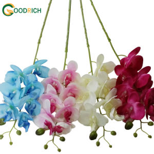 Wholesale Cheaper Orchid Artificial Flower pictures & photos