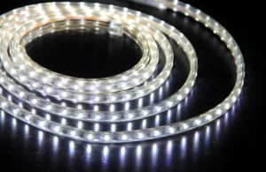 Warm White Flexible SMD 5050 Outdoor LED Light pictures & photos