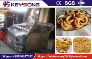 Semi Automatic Electric Gas Batch Fryer pictures & photos