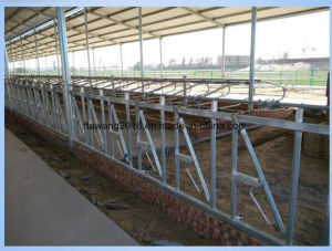 Galvanized Calf Feed Barrier Cattle Feeding Fence pictures & photos