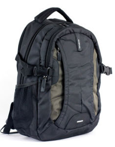 Cool Wholesale Prfessional Backpack Sport Bags Laptop Backpack pictures & photos