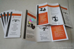 Custom Design Printing 3 Panel Folded Booklet/catalog/Brochure pictures & photos